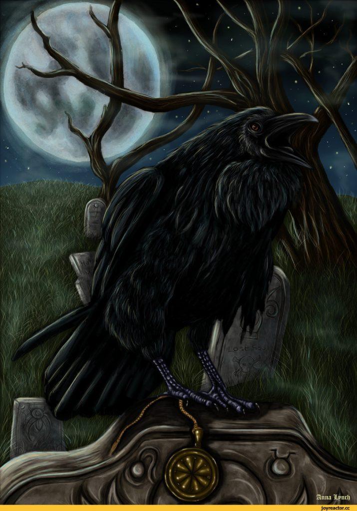 ворон луна
