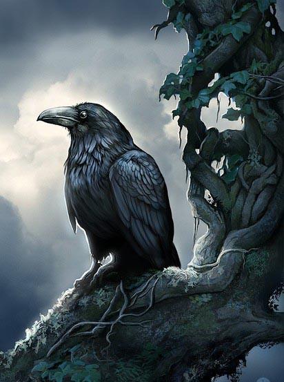 чкрный ворон