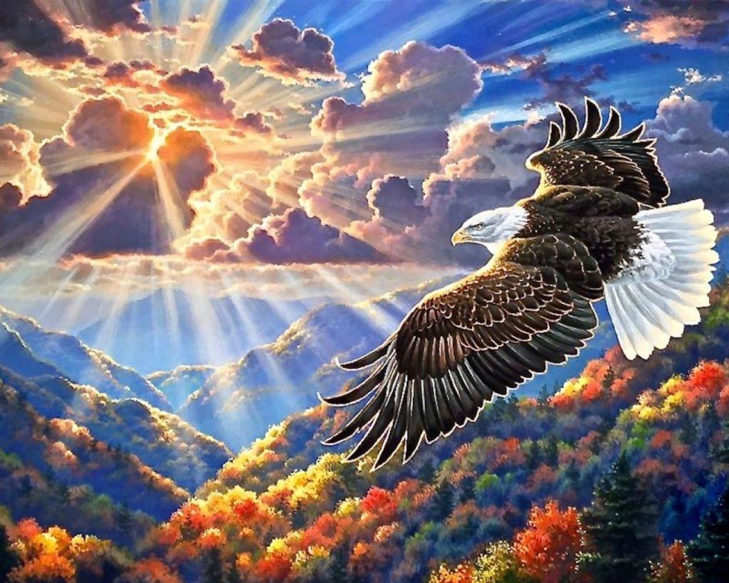 медитация полет орла