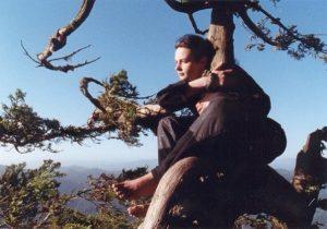 девушка на дерево