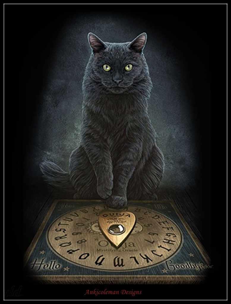 кошка магический зверь