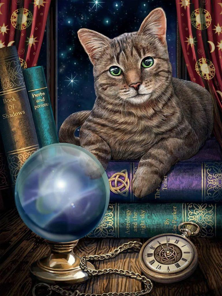 кошка в магии